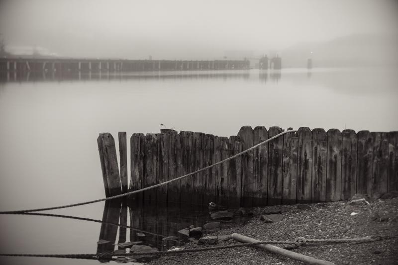 waterfront__DSC6704